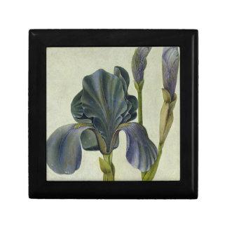 An Iris Gift Box