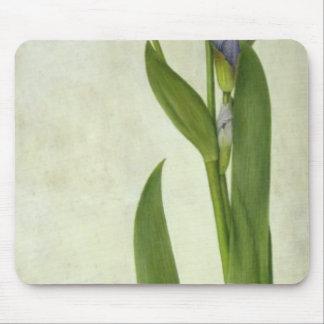 An Iris Mouse Mat