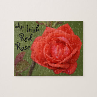 An Irish Red Rose Jigsaw Puzzle