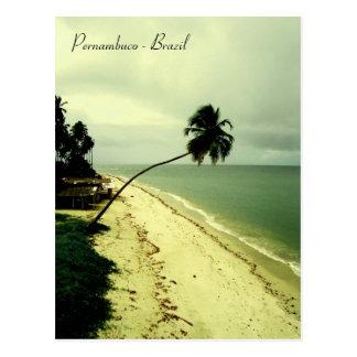 An island. Pernambuco, Brazil Postcard