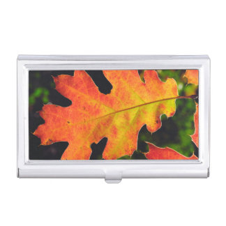 An Oak Leaf in Six Rivers National Forrest Business Card Holder
