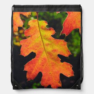 An Oak Leaf in Six Rivers National Forrest Drawstring Bag