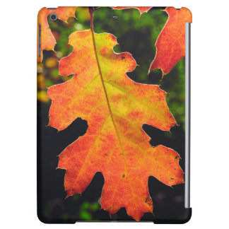 An Oak Leaf in Six Rivers National Forrest iPad Air Cover
