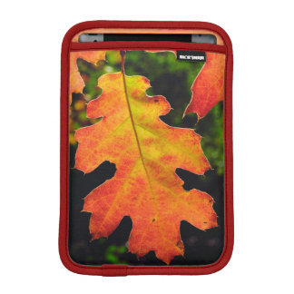 An Oak Leaf in Six Rivers National Forrest iPad Mini Sleeve