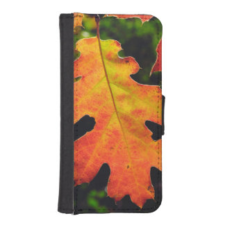 An Oak Leaf in Six Rivers National Forrest iPhone SE/5/5s Wallet Case