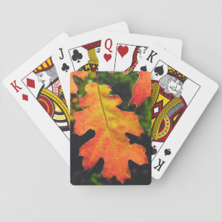 An Oak Leaf in Six Rivers National Forrest Playing Cards