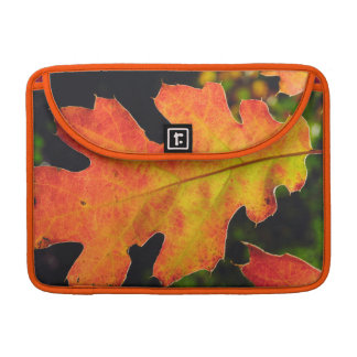 An Oak Leaf in Six Rivers National Forrest Sleeve For MacBook Pro