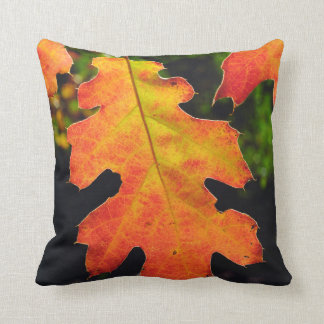 An Oak Leaf in Six Rivers National Forrest Throw Pillow