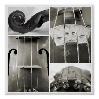 An Old Viola s Parts Photographic Print
