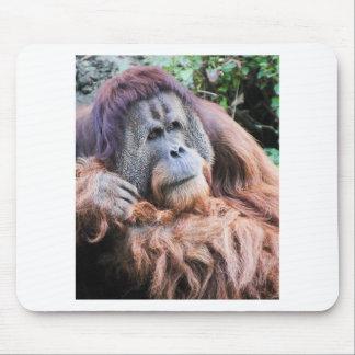 An Orangutan Named Henry Mouse Pads