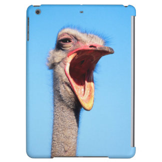 An Ostrich showing aggression