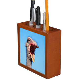 An Ostrich showing aggression Desk Organiser
