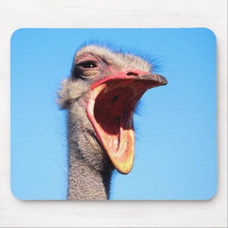 An Ostrich showing aggression Mouse Mat