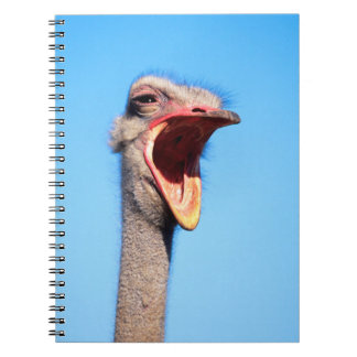 An Ostrich showing aggression Notebook
