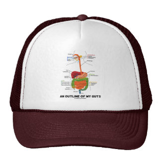 An Outline Of My Guts Digestive System Humor Trucker Hat