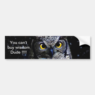 An owl and stars bumper stickers