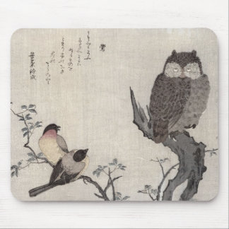 An Owl and two Eastern Bullfinches Mouse Pad