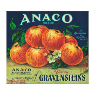 Anaco Apple Crate Label Canvas Print