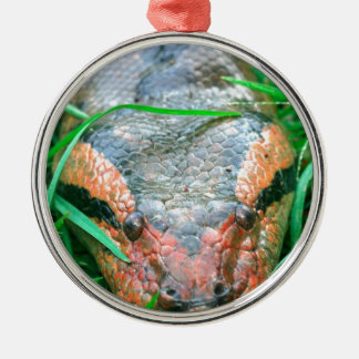 Anaconda snake Amazon Peru Christmas Ornament
