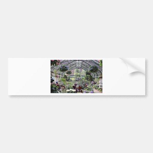 anada 086.JPG Bumper Sticker