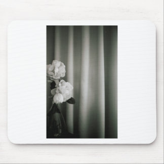 Analog to silver gelatin 35mm film photo of white