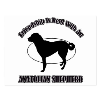 ANATOLIAN SHEPHERD DOG DESIGNS POST CARDS
