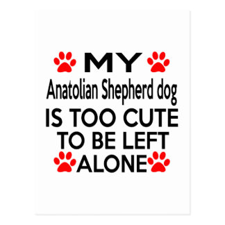 Anatolian Shepherd dog Designs Postcard