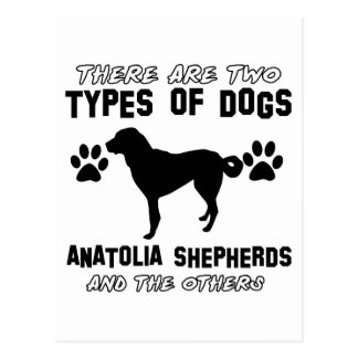Anatolian Shepherd dog designs Postcards