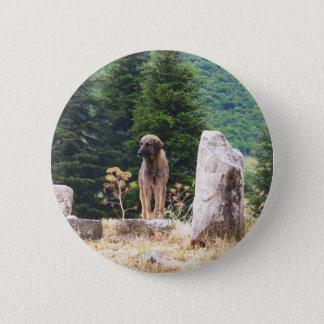 Anatolian Shepherd Dog -  Ephesus, Turkey 6 Cm Round Badge