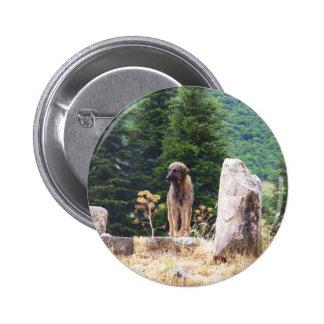 Anatolian Shepherd Dog -  Ephesus, Turkey Pin