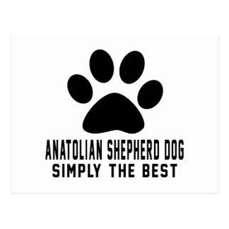 Anatolian Shepherd dog Simply the best Postcard