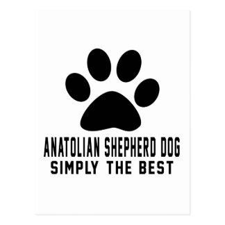 Anatolian Shepherd dog Simply the best Postcard
