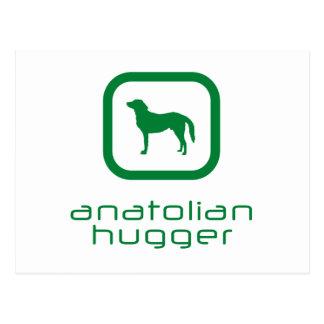 Anatolian Shepherd Post Card