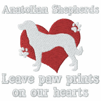 Anatolian Shepherds Leave Paw Prints