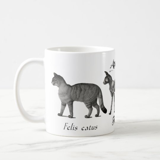 Anatomia of the Cat Coffee Mug