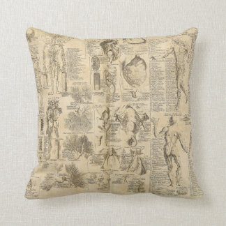 Anatomical Chart from Cyclopaedia 1728 Cushion