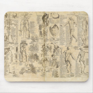 Anatomical Chart from Cyclopaedia 1728 Mouse Pad