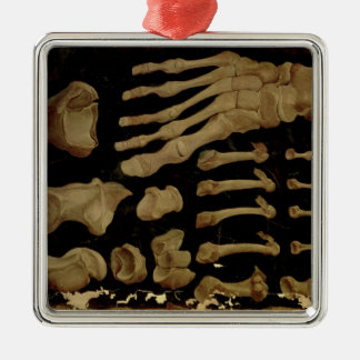 Anatomical drawing of the bones of the foot christmas ornament