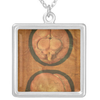 Anatomical drawing of the human brain silver plated necklace