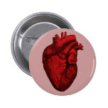Anatomical Human Heart 6 Cm Round Badge