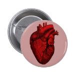 Anatomical Human Heart 6 Cm Round Badge