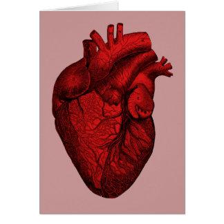 Anatomical Human Heart Greeting Card