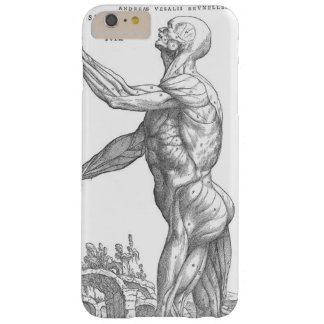 Anatomical Man Barely There iPhone 6 Plus Case