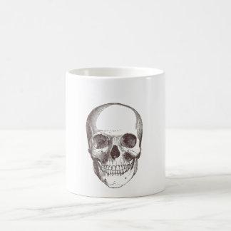 Anatomical Skull Black White Mugs