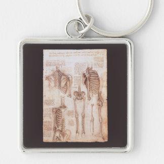 Anatomy Drawings Human Skeletons Leonardo da Vinci Keychains
