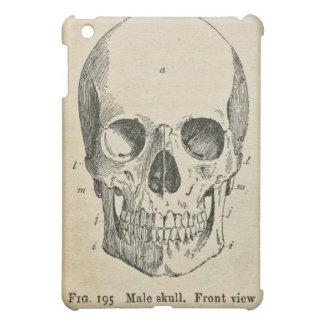 Anatomy Medical Diagram Vintage Skull iPad Case