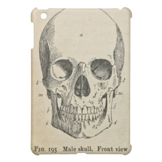 Anatomy Medical Diagram Vintage Skull iPad Case Cover For The iPad Mini