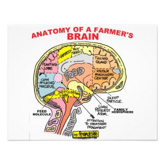 ANATOMY OF A FARMER S BRAIN CUSTOM ANNOUNCEMENT