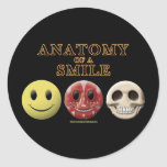 Anatomy of a Smile Round Sticker