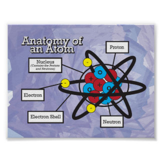 Anatomy of an Atom Print